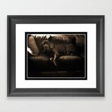 My dog - a Mastino Napoletano  Framed Art Print