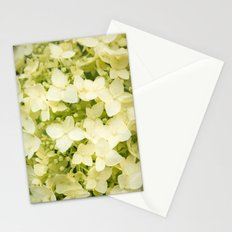 The flowers of white hydrangeas. Stationery Cards