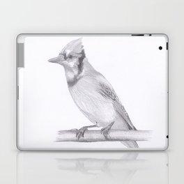 Blue Jay drawing Laptop & iPad Skin