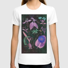 Botanical Study #3, Vintage Botanical Illustration Collage Art T-shirt