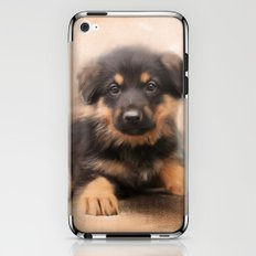 German Shepherd Puppy Portrait iPhone & iPod Skin