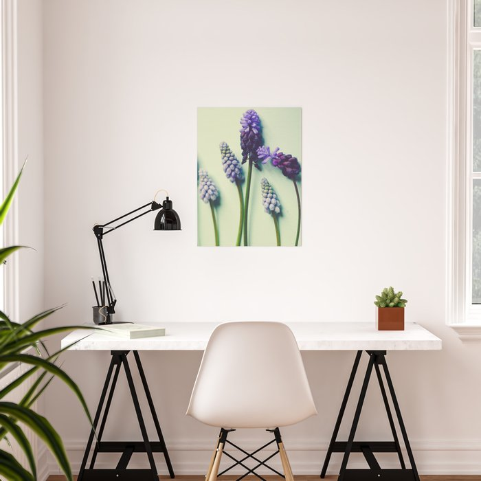 Pretty Blue Flowers Poster