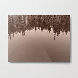 Pine Trees Reflected in an Alpine Lake Metal Print