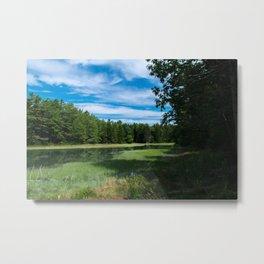 A Maine Marshland Metal Print