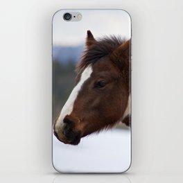 Tri-Colored Horse iPhone Skin