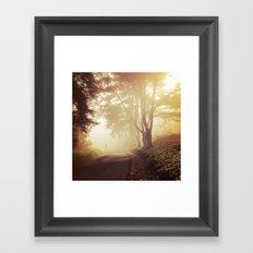 Print #8 Framed Art Print