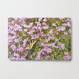Yellow Tiger Swallowtail Metal Print