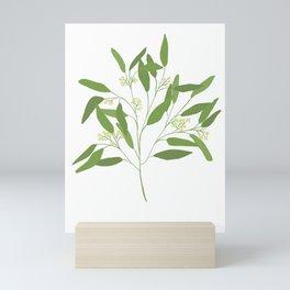 Seeded Eucalyptus Minimal Botanical Illustration Mini Art Print