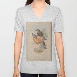 Fawn-breasted Bower-bird, chlamydera cerviniventris3 Unisex V-Neck