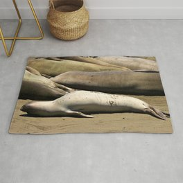 Elephant Seal Baby with Monday Feels Rug