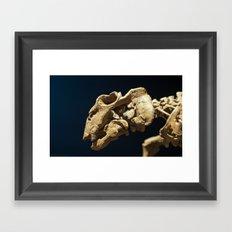 Nature 01 Framed Art Print