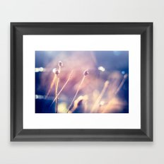 Winter Flowers (Color Photograph) Framed Art Print