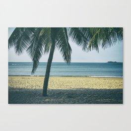 Under the palm tree shadows Canvas Print