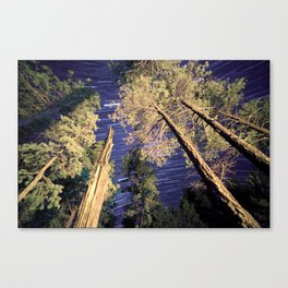 Startrails Canvas Print