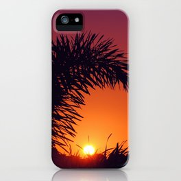 sunset in mexico iPhone Case
