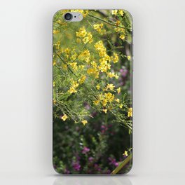 Yellow Palo Verde Blossoms on Purple Texas Ranger Flowers in Background iPhone Skin