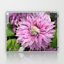 Clematis Josephine 2 Laptop & iPad Skin