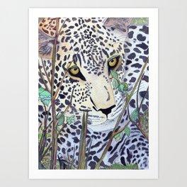 Never Resting - Leopard by Maureen Donovan Art Print