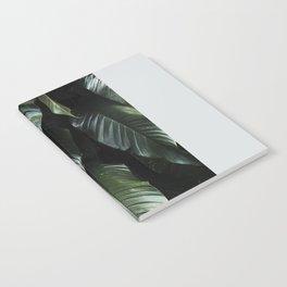 Growth II Notebook