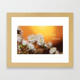 bibi flower Framed Art Print