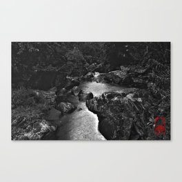 Monochrome River Canvas Print