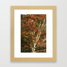 The Dying Leaves' Final Passion Framed Art Print