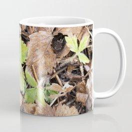 Season of Change 7 Coffee Mug