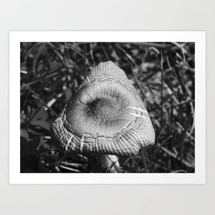 Mushroom Gloom Art Print
