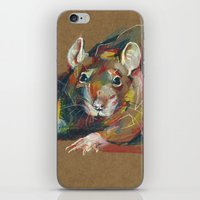 rat iPhone & iPod Skins featuring Rat by Anaïs Chesnoy