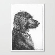 Tegan the dog Canvas Print