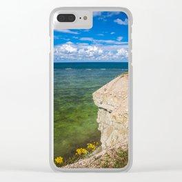 Panga park 1.0 Clear iPhone Case