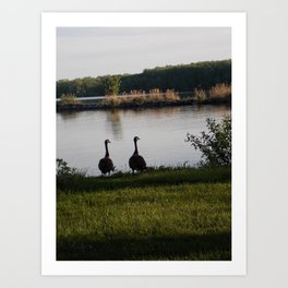 feathered friends 2 Art Print
