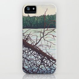 Raven Lake, Algonquin Park iPhone Case