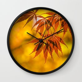Maple in the gold fall Wall Clock