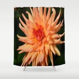 A Radiant Beauty Shower Curtain