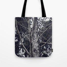 Grace Beneath The Pines II Tote Bag