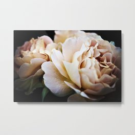 Estella Rose Metal Print