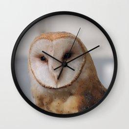 Barn Owl on Alert Wall Clock