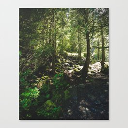 Oregon Forest Canvas Print