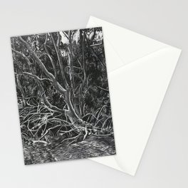 The Mangroves Stationery Cards