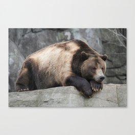 Big Ole Grizzly Bear Canvas Print