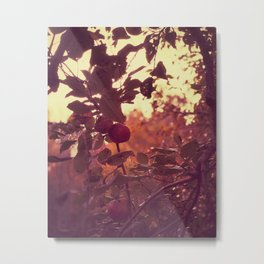 Ease into Warmth Metal Print