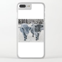 Scotish Highland cattle Clear iPhone Case