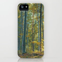 morton combs 04 iPhone Case