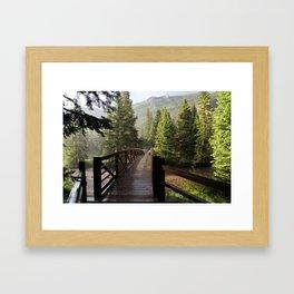 Summer Hail Framed Art Print