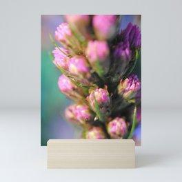 Purple Liatris Mini Art Print