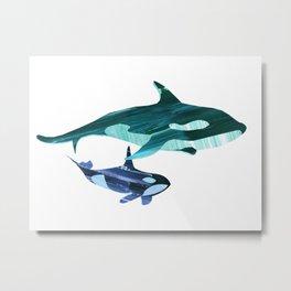 A swim together Metal Print