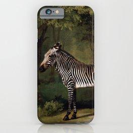 George Stubbs - Zebra iPhone Case