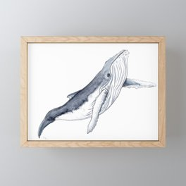 Baby humpback whale for children kid baby Framed Mini Art Print