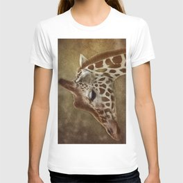 Its all in a Glance T-shirt